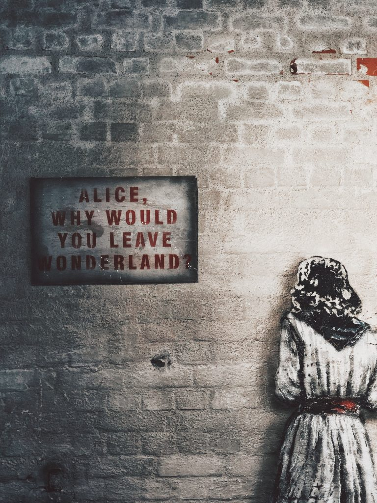 Alice, why would you leave wonderland wall art